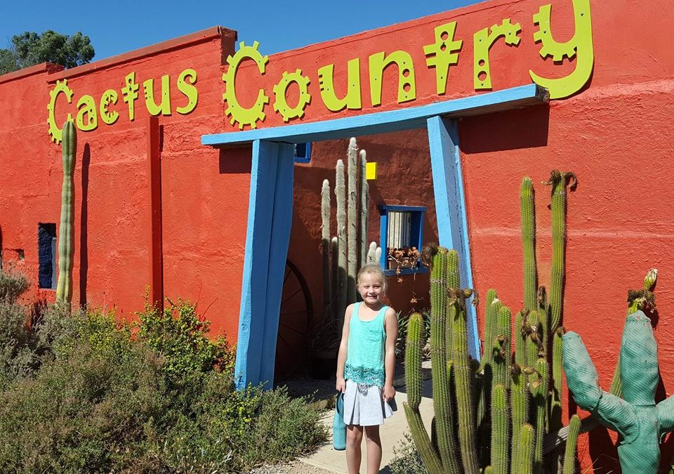 Cactus Country – an attraction with a difference!