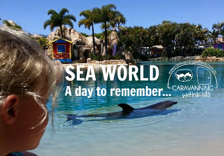 Seaworld…a day to remember!