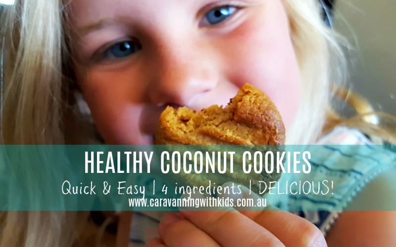Healthy Coconut Cookies – Quick & Easy Travel Snack