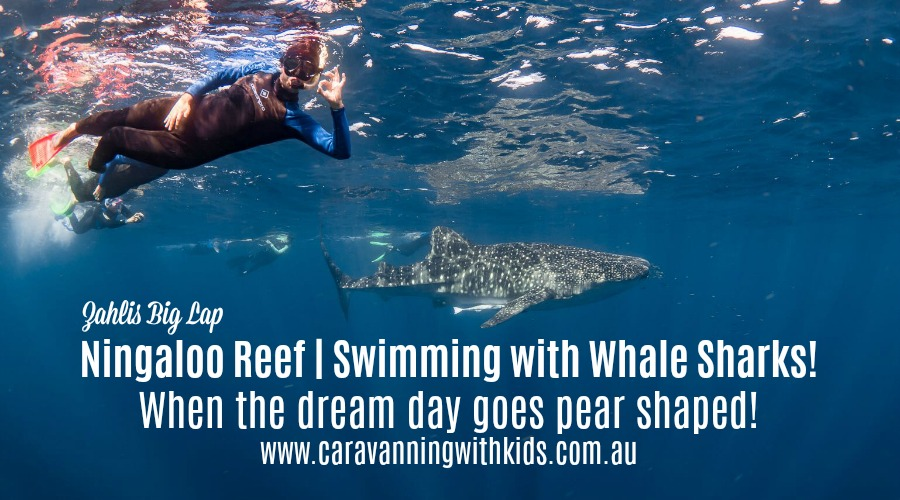 Ningaloo Reef | A whale shark encounter that didn't quite go as planned!